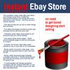 Thumbnail Instant Ebay Store